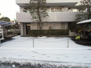 川越歯科医院 雪かき